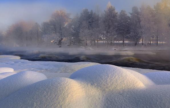 Picture winter, snow, trees, nature, river, Sweden, Sweden, Voxnan River, Hälsingland