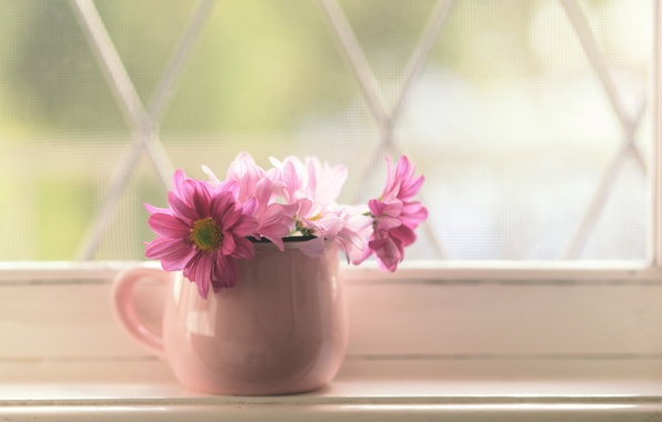 Picture flowers, window, pot