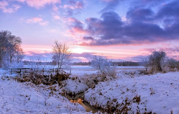 Picture winter, field, snow, trees, bridge, dawn, morning, village, river