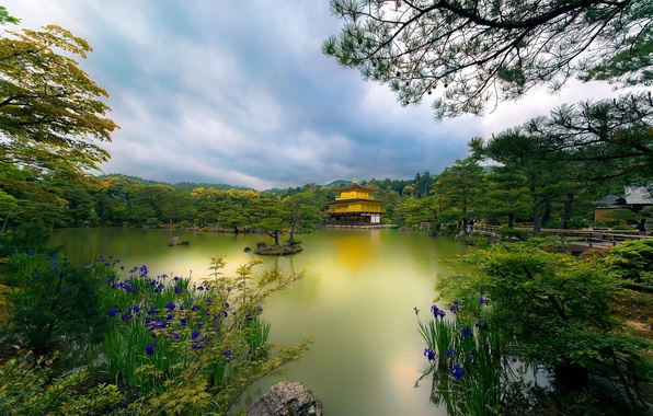 Picture trees, flowers, lake, Park, Japan, temple, Japan, Kyoto, Kyoto, Temple, Golden Pavilion, Golden pavilion