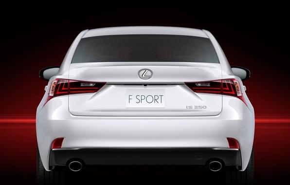 Picture Lexus, car, rear view, F-Sport, IS 250