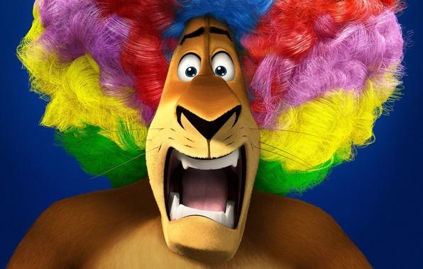 Picture cartoon, Leo, circus, wig, Madagascar 3, Alex