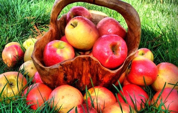 Picture summer, grass, nature, basket, apples, food, red, fruit, vitamins, juicy, ripe