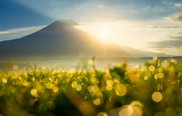 Picture the sky, grass, the sun, clouds, rays, light, Rosa, glare, heat, mountain, morning, bokeh