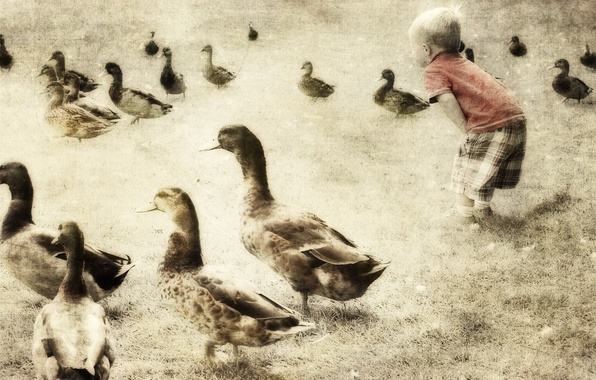 Picture style, background, duck, boy