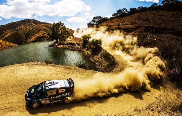 Picture Ford, Auto, Dust, Sport, Ford, Race, Skid, Day, WRC, the front, Rally, Rally, Fiesta, Elfyn …