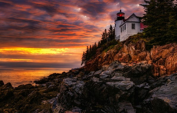 Picture clouds, trees, rocks, lighthouse, the evening, glow, USA, Hancock, Man, Bass Harbor