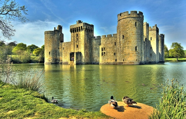 Picture water, ducks, Bodiam castle