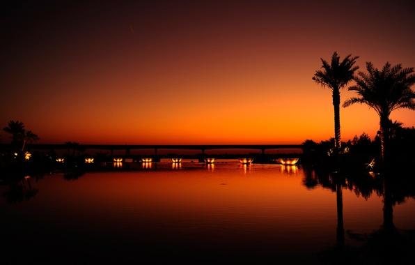 Picture water, light, sunset, night, orange, the city, reflection, palm trees, black, the evening, Dubai