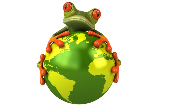 Picture eyes, look, graphics, planet, frog, Free frog 3d