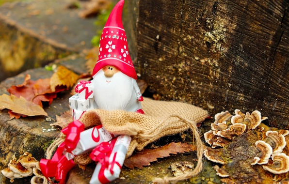 Picture leaves, nature, toy, mushrooms, new year, Christmas, small, gifts, beard, log, Santa Claus, Santa Claus, …