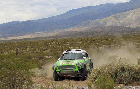 Picture Mountains, Sport, Green, Race, Mini Cooper, Rally, Dakar, Dakar, MINI, Mini Cooper, X-raid
