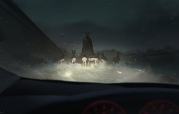 Picture auto, light, night, the demon, horns, salon, goats