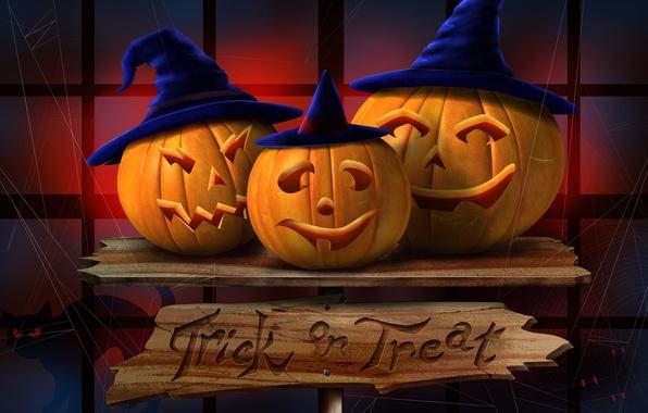 Picture pumpkin, Halloween, orange, halloween