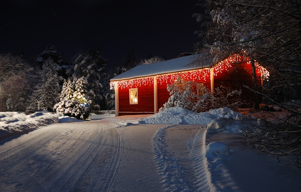 Picture winter, road, forest, snow, trees, nature, lights, lights, house, holiday, house, forest, Happy New Year, …