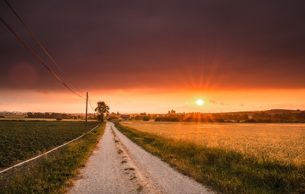 Picture road, field, sunset