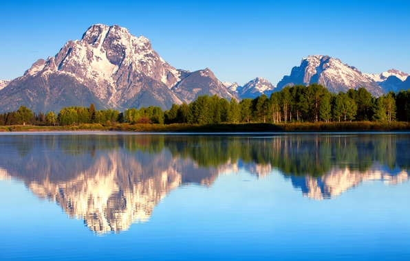 Picture forest, summer, reflection, nature, morning, USA, Wyoming, Grand Teton national Park, Mount Moran, lake Jackson