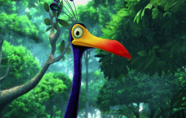 Picture Bird, Beak, Kevin, Big Bird, Kevin