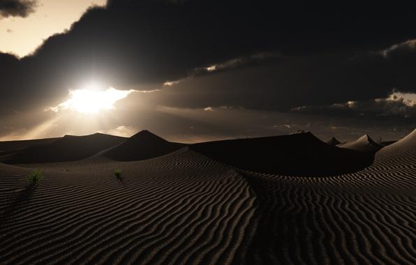 Picture grass, clouds, sunset, traces, nature, desert, art, dunes