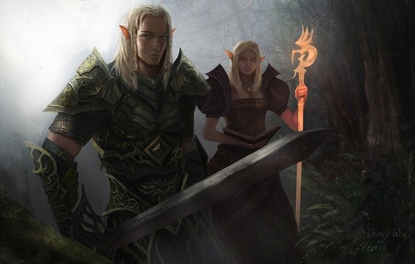 Picture forest, girl, sword, warrior, art, elves, MAG, staff, guy, Donny Wei