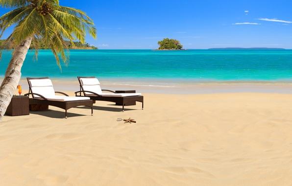 Picture sea, beach, stars, shell, umbrellas, cocktail, sunbeds, sea, tropic