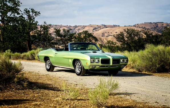 Picture Pontiac, GTO, 1970, Pontiac, Convertible, Ram Air III, The Judge
