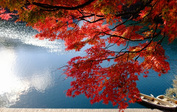 Picture autumn, branches, lake, Marina, boats, Japan, Japan, maple, Fukushima, Fukushima, Bandai, Japanese maple, lake Bishamon, …