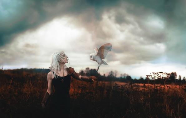 Picture girl, background, bird