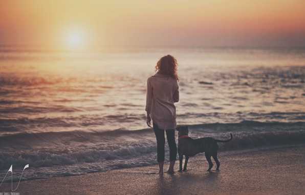 Picture water, girl, sunset, lake, dog, the evening
