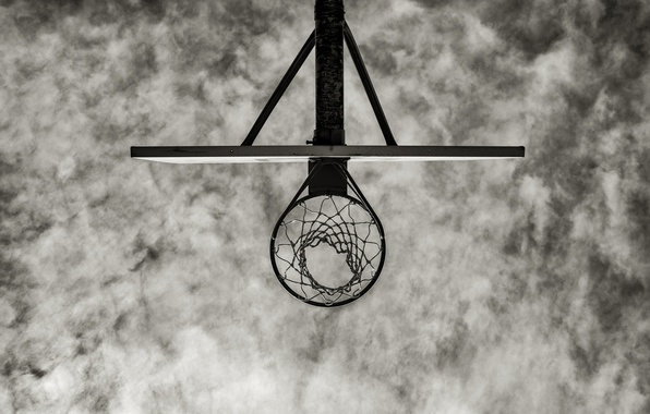 Picture ring, shield, basketball