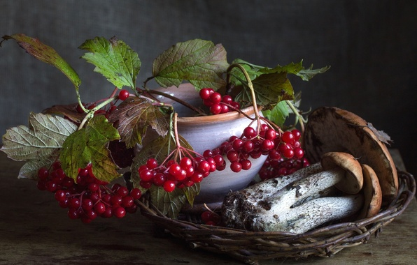 Photo wallpaper berries, autumn, mushrooms, boletus, Kalina
