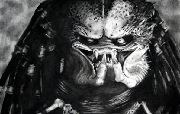 Picture figure, monster, predator, black and white, mug, Predator