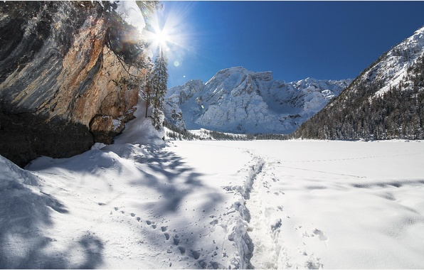 Picture the sun, snow, trees, mountains, nature