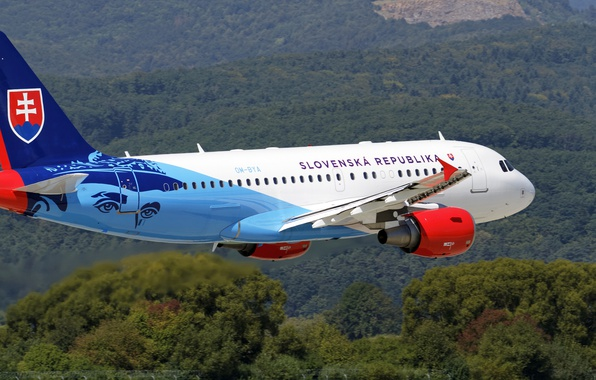 Picture the plane, the rise, Airbus, A319-115X