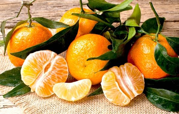 Picture table, food, blur, garden, green, leaves, placer, citrus, vitamins, dumb-dumb, orange, napkin, bokeh, juicy, delicious, …