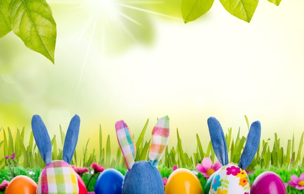 Picture grass, toy, eggs, spring, rabbit, meadow, Easter, grass, sunshine, rabbit, flowers, spring, eggs, easter, bunny, …