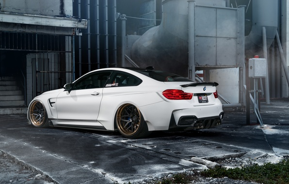 Picture car, bmw, white, tuning, hq Wallpapers, William Stern, f82