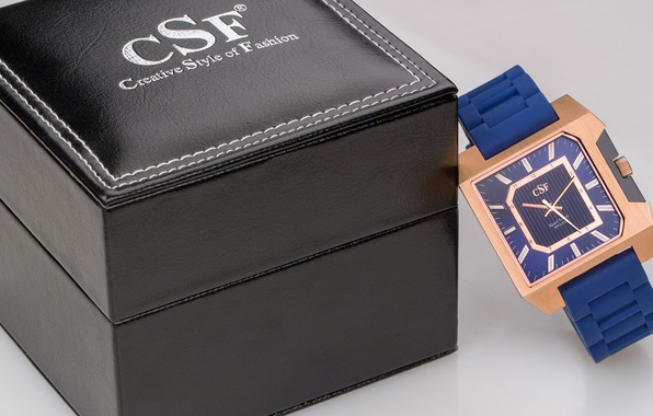 Picture box, Watch, CSF