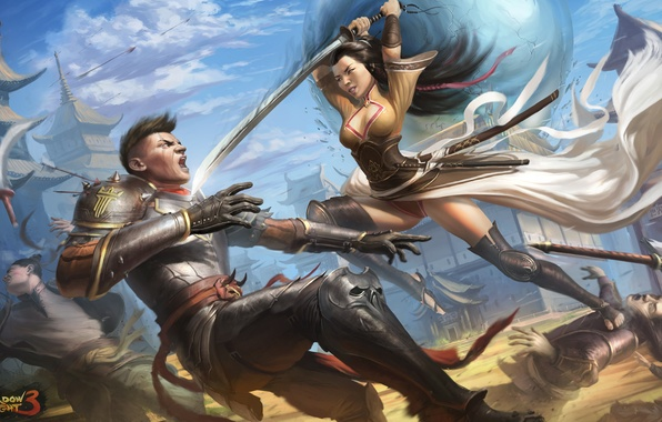 Photo wallpaper weapons, the game, Shadow fight 3, girl, art, guy, armor