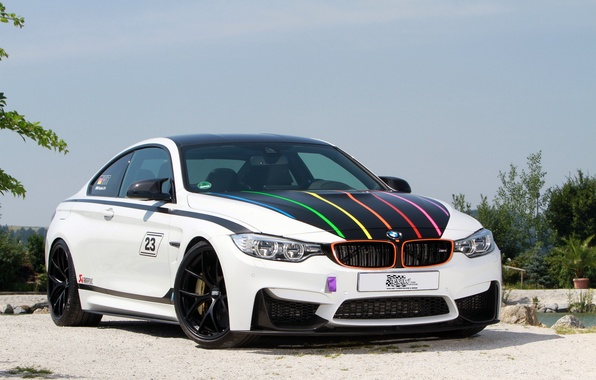 Picture BMW, BMW, F82, 2014, DTM Champion Edition