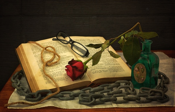 Picture rose, glasses, chain, book, still life, string