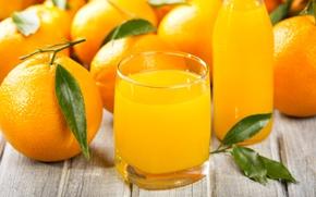 Picture oranges, citrus, orange juice