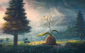Picture snail, Bush, clouds, rain, forest