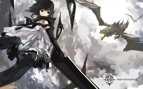 Picture the sky, girl, clouds, weapons, dragons, sword, art, swd3e2, pixiv fantasia fall kings