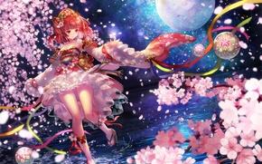 Picture water, girl, night, tree, the moon, anime, petals, Sakura, art, terai