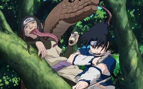 Picture forest, weapons, snake, headband, Naruto, red eyes, the fight, long tongue, sharingan, ninja, Sasuke Uchiha, …