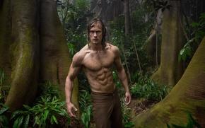 Picture cinema, forest, long hair, trees, jungle, leaves, movie, Africa, hero, british, film, konoha, powerful, vegetation, …