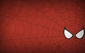 Picture spider-man, spider-man, figure, minimalism, web, minimalism, 1920x1080, picture, web