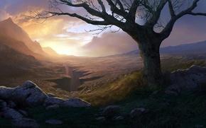 Picture mountains, bridge, stones, tree, rocks, art, canyon, gorge, Andreas Rocha