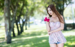 Picture summer, look, girl, face, background, hair, Asian